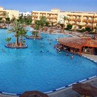 Desert Rose Resort бассейн