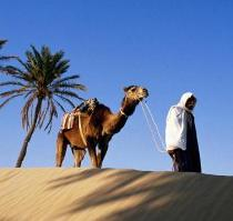 пустыня в тунисе