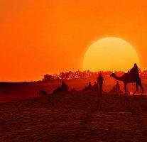яркий тунис