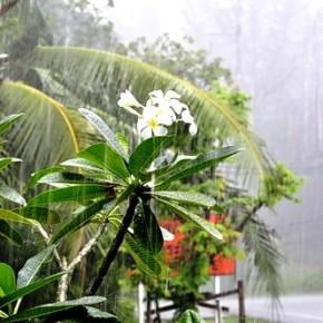 Сезон дождей в Пхукете