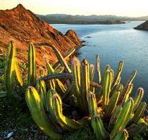 мексика вид с горы
